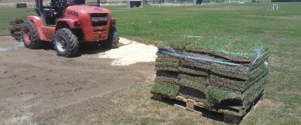 , Plantación  de tepe en campo de fútbol