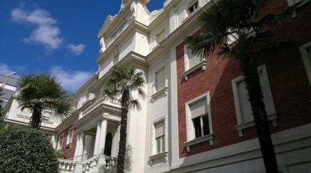 , Poda de las palmeras del colegio Maristas San José (León)